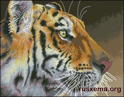 Тигры -схемы для вышивки