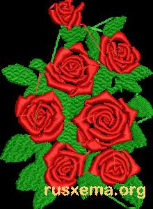 1300 роз в формате EMB