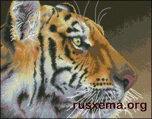 Вышивка крестом - Тигр 1.